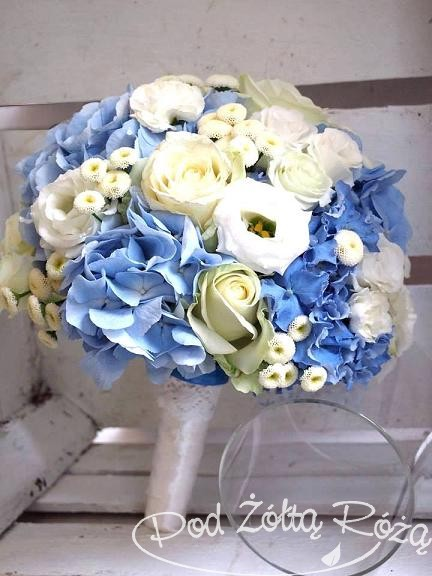 bukiecik niebieski